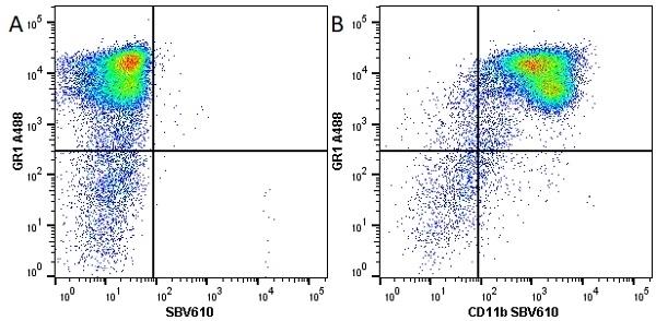 Anti Mouse Gr-1 Antibody, clone RB6-8C5 thumbnail image 17