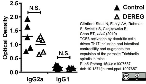 Anti Mouse IgG2a Heavy Chain Antibody, clone LO-MG2a-7 thumbnail image 3
