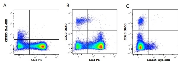 Anti Mouse IgG2b:Alk. Phos Antibody, clone AbD24127 thumbnail image 5