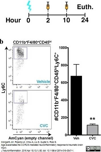 Anti Mouse Ly-6C Antibody, clone ER-MP20 thumbnail image 4