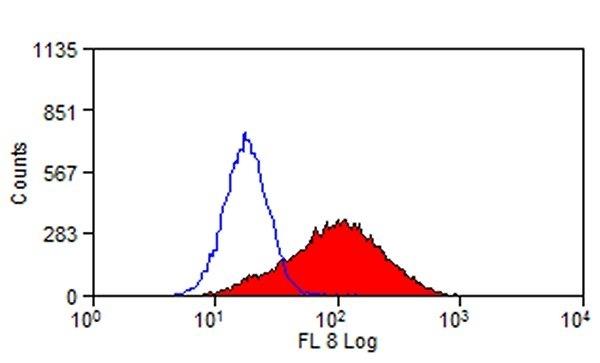 Anti Mouse TIM-1 Antibody, clone RMT1-10 thumbnail image 1