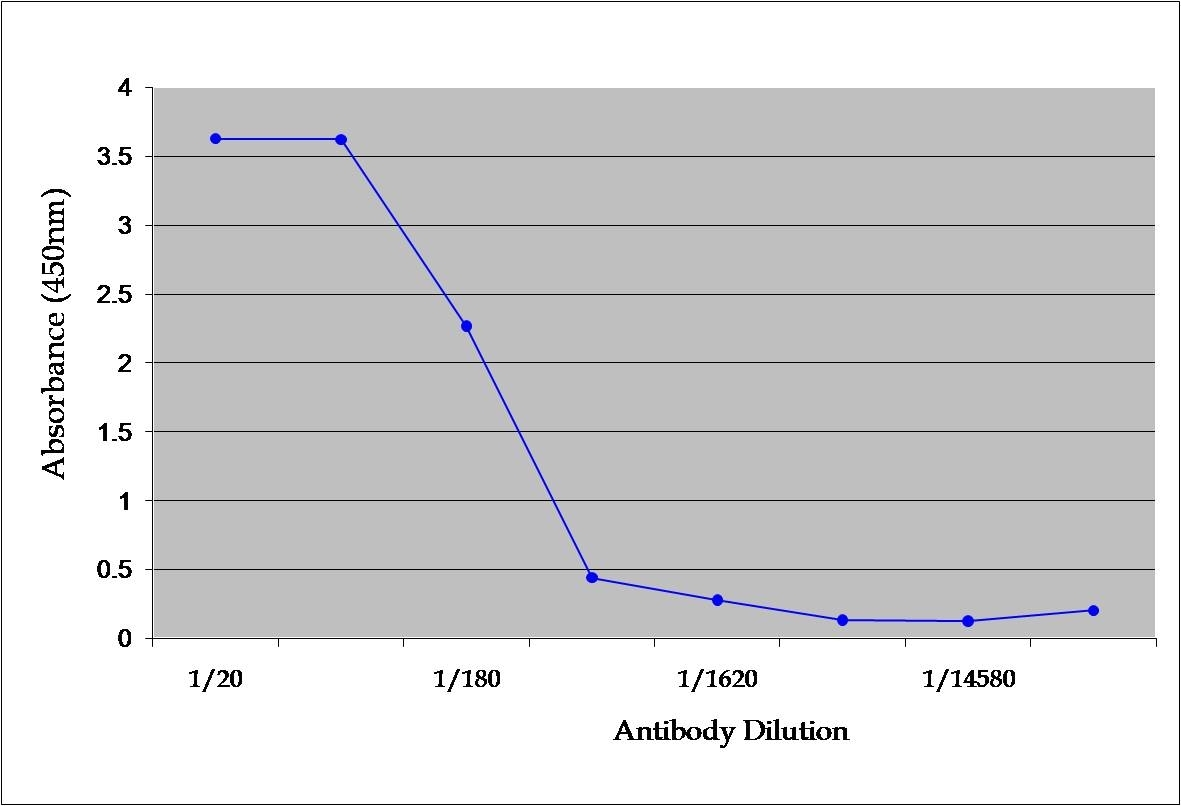 Anti Mouse TNF Alpha Antibody, clone MP6-XT22 gallery image 1