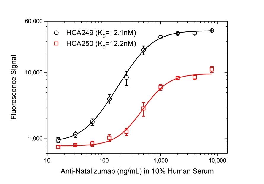 Anti Natalizumab Antibody, clone AbD21384_hIgG1 thumbnail image 3