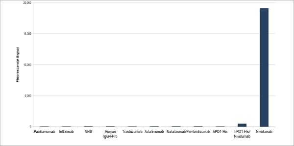 Anti Nivolumab Antibody, clone AbD30255 thumbnail image 1
