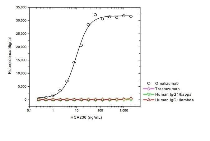 Anti Omalizumab Antibody, clone AbD20669 thumbnail image 2