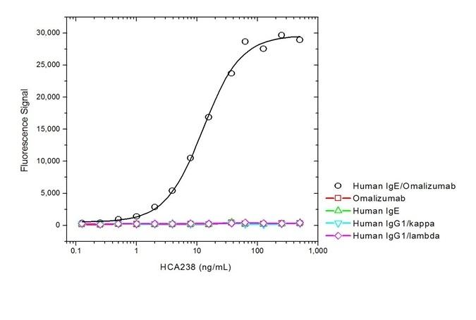 Anti Omalizumab (Drug/Target Complex) Antibody, clone AbD20760 thumbnail image 2