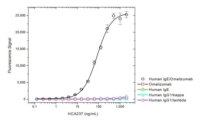 Anti Omalizumab (Drug/Target Complex) Antibody, clone AbD20760_hIgG1 thumbnail image 2