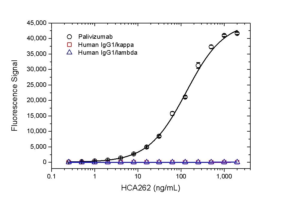 Anti Palivizumab Antibody, clone AbD23967_hIgG1 thumbnail image 2