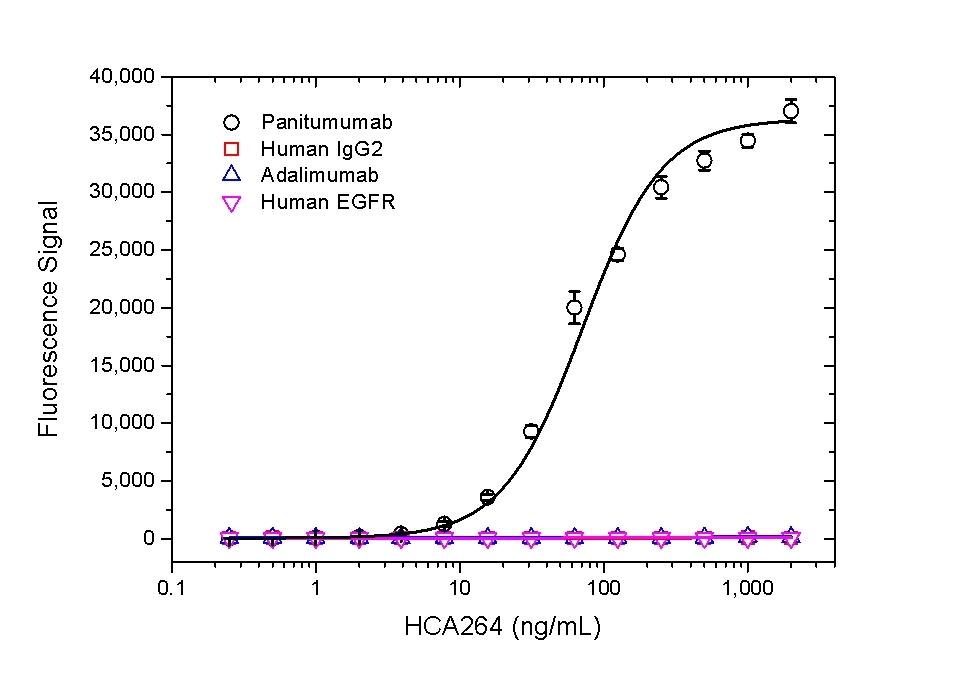 Anti Panitumumab Antibody, clone AbD23894 thumbnail image 1