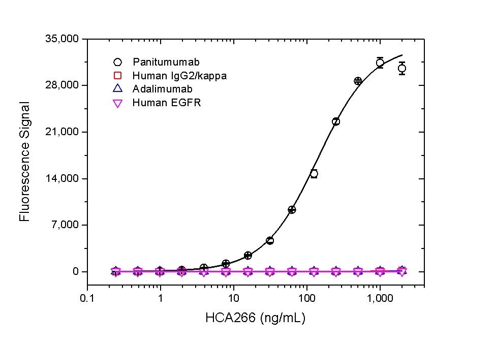 Anti Panitumumab Antibody, clone AbD23895_hIgG1 thumbnail image 2
