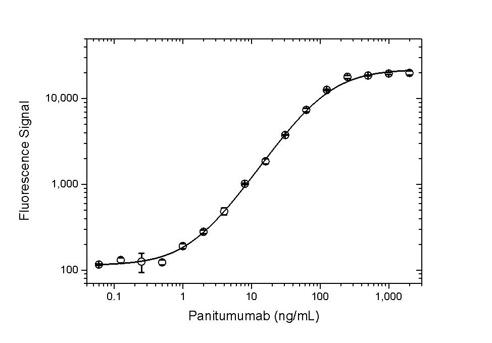 Anti Panitumumab Antibody, clone AbD23895_hIgG1 thumbnail image 3
