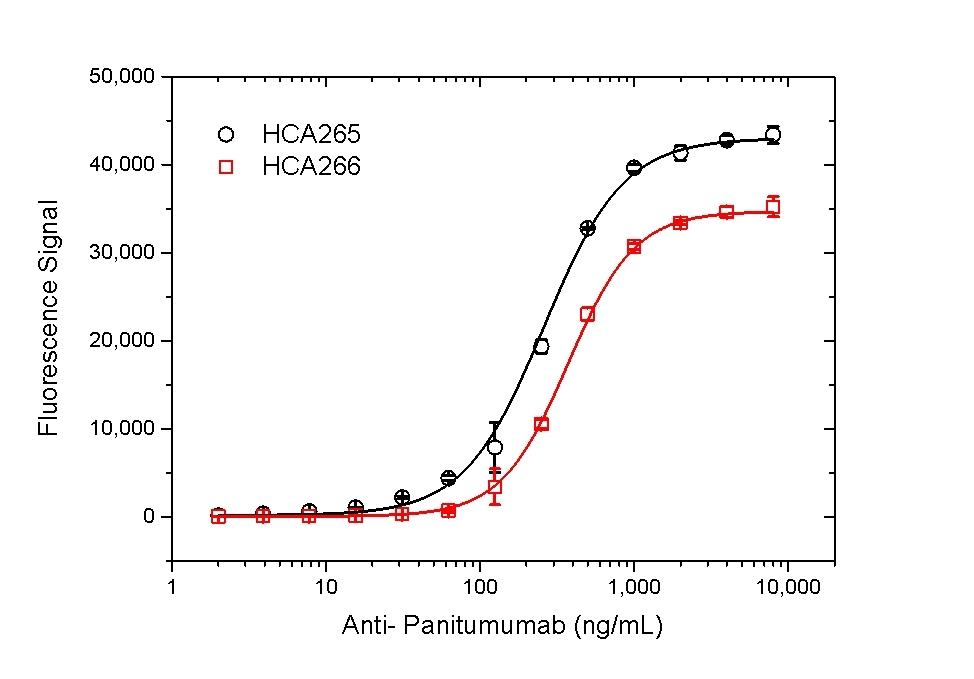 Anti Panitumumab Antibody, clone AbD23895_hIgG1 thumbnail image 4