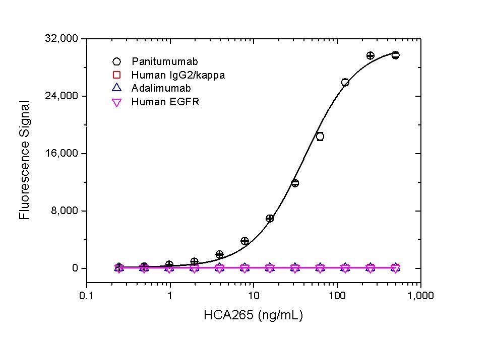 Anti Panitumumab Antibody, clone AbD23897_hIgG1 thumbnail image 2