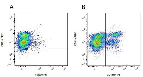 Anti Pig CD11R1 Antibody, clone MIL4 thumbnail image 2