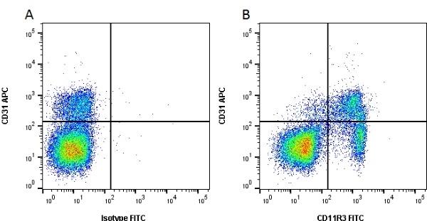 Anti Pig CD11R3 Antibody, clone 2F4/11 thumbnail image 1