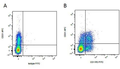 Anti Pig CD11R3 Antibody, clone 2F4/11 thumbnail image 3