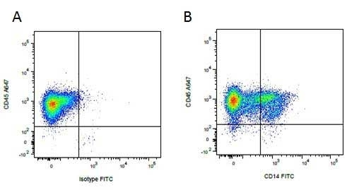 Anti Pig CD14 Antibody, clone MIL2 thumbnail image 5
