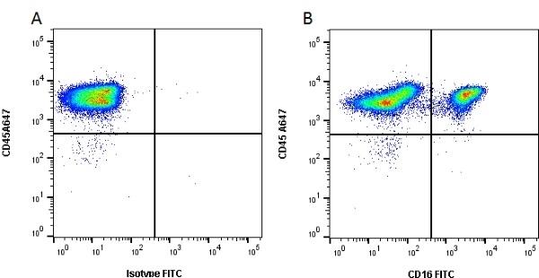 Anti Pig CD16 Antibody, clone G7 thumbnail image 1