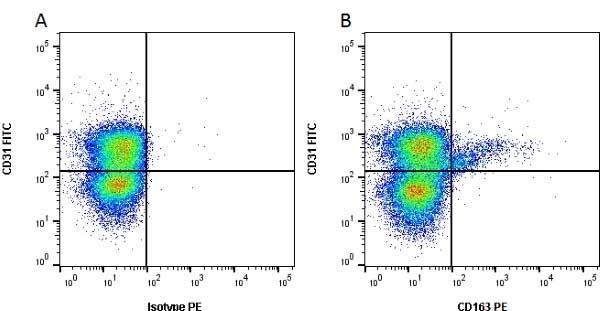 Anti Pig CD163 Antibody, clone 2A10/11 thumbnail image 1
