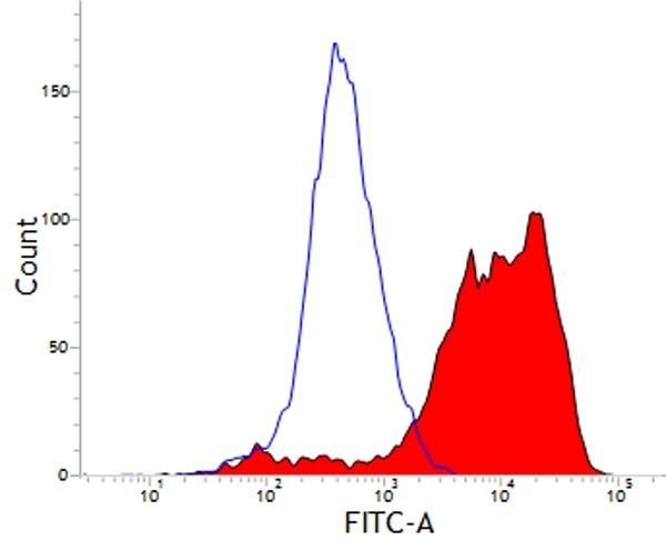 Anti Pig CD203a Antibody, clone PM18-7 thumbnail image 1