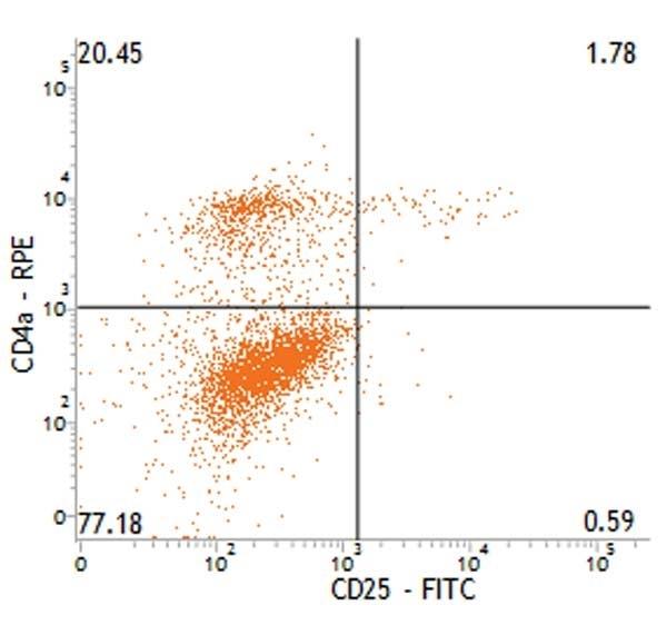 Anti Pig CD25 Antibody, clone K231.3B2 thumbnail image 1
