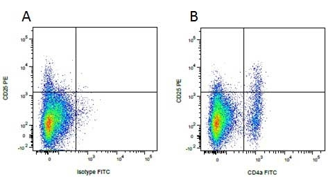 Anti Pig CD25 Antibody, clone K231.3B2 thumbnail image 4