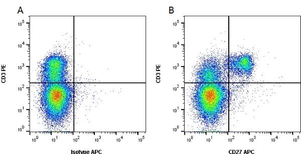 Anti Pig CD27 Antibody, clone B30C7 thumbnail image 1