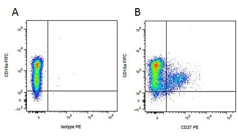 Anti Pig CD27 Antibody, clone B30C7 thumbnail image 6