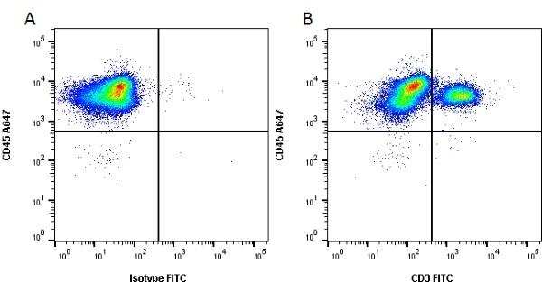 Anti Pig CD3 Antibody, clone PPT3 thumbnail image 1