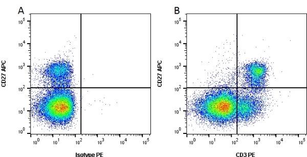 Anti Pig CD3 Antibody, clone PPT3 thumbnail image 2