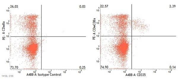 Anti Pig CD335 Antibody, clone VIV-KM1 thumbnail image 2