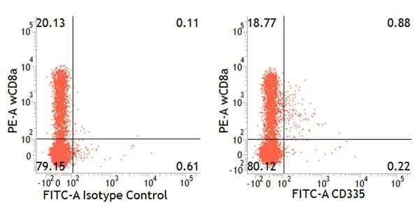 Anti Pig CD335 Antibody, clone VIV-KM1 thumbnail image 3