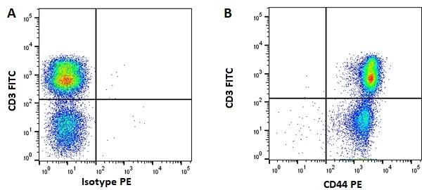 Anti Pig CD44 Antibody, clone MAC329 gallery image 1