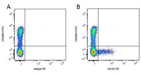 Anti Pig CD45RA Antibody, clone MIL13 thumbnail image 4