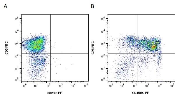 Anti Pig CD45RC Antibody, clone 3a56 thumbnail image 1