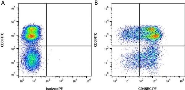 Anti Pig CD45RC Antibody, clone 3a56 thumbnail image 3