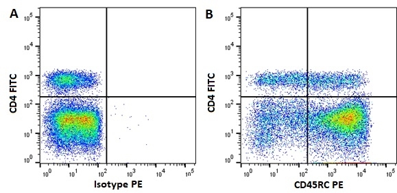 Anti Pig CD45RC Antibody, clone MIL5 gallery image 1
