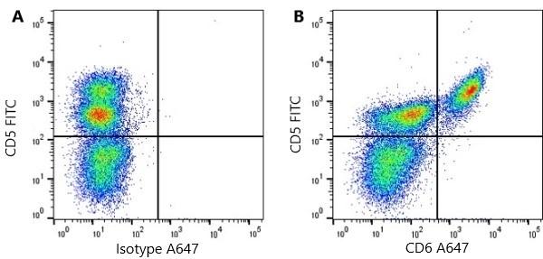 Anti Pig CD6 Antibody, clone a38b2 thumbnail image 1