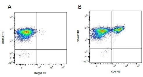 Anti Pig wCD6 Antibody, clone MIL8 thumbnail image 2