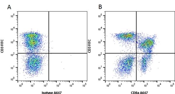 Anti Pig CD8 Alpha Antibody, clone 11/295/33 thumbnail image 2
