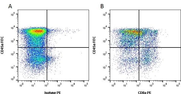 Anti Pig wCD8 Alpha Antibody, clone MIL12 thumbnail image 1