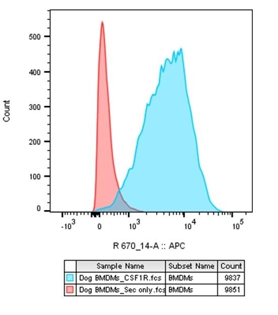 Anti Pig CSF1R Antibody, clone ROS8G11 thumbnail image 4