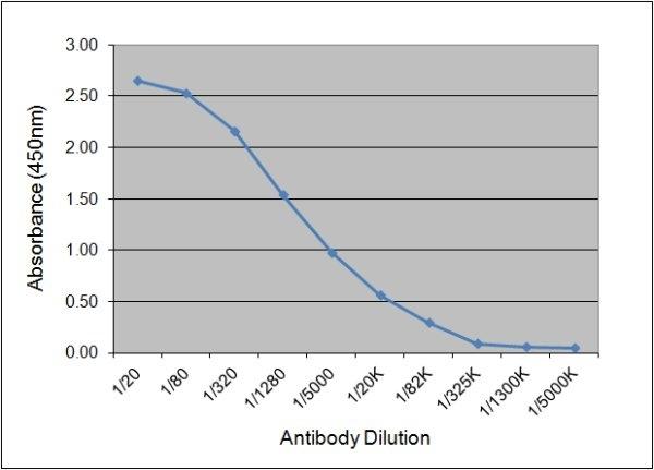 Anti Pig IgG1 Antibody, clone K139 3C8 thumbnail image 1
