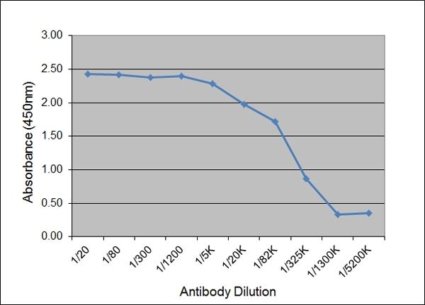 Anti Pig IgG2 Antibody, clone K68 Ig2 thumbnail image 1