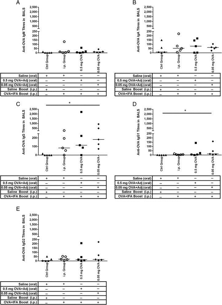 Anti Pig IgG2 Antibody, clone K68 Ig2 thumbnail image 3
