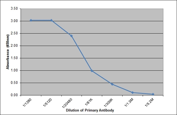 Anti Pig Ig Lambda Light Chain Antibody, clone K139 3E1 gallery image 1