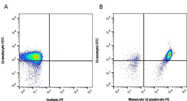 Anti Pig Monocyte/Granulocyte Antibody, clone 74-22-15  thumbnail image 2