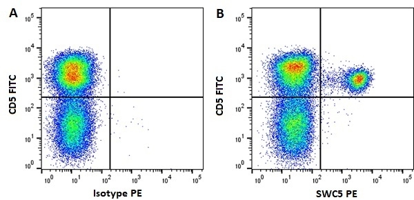 Anti Pig SWC5 Antibody, clone b37c10 thumbnail image 1
