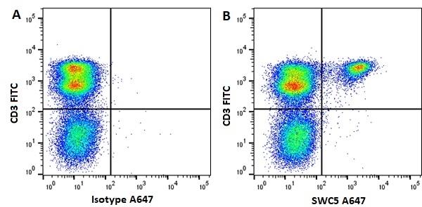 Anti Pig SWC5 Antibody, clone b37c10 thumbnail image 2