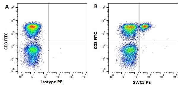 Anti Pig SWC5 Antibody, clone b37c10 thumbnail image 3